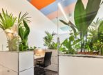 Flying Jungle: Aufbruch ins grüne Bürozeitalter